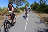 1 Day Charming Rides Through The Wonders Of Camargue