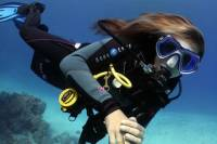 1 Day Dive Pack for Certified Divers in Sharm el Sheikh