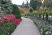 1-Hour Victoria City Tour and Butchart Gardens
