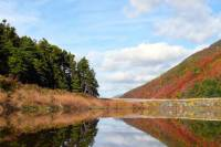 11-Day Excursion: Nova Scotia and Prince Edward Island: Music and Culture of Acadian People and the Maritimes