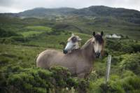 2-Day Connemara and Galway Bay Tour from Dublin by Train