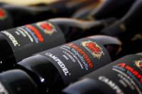 2-Hour Amarone Wine Tasting Valpolicella Classico