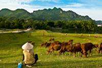 3-Day Mai Chau Valley Tour from Hanoi with Biking
