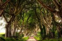3-Day Northern Ireland Tour from Dublin