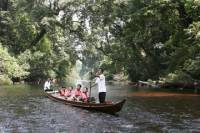 3-Day Taman Negara Adventure from Kuala Lumpur