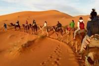 3-Night Marrakech to Fez Sahara Explorer Tour