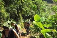 4-Day Ba Be National Park Trekking Tour from Hanoi