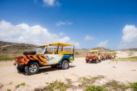 4x4 Tour and Natural Pool Snorkeling in Aruba