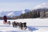 5-Day Active Winter Adventure in Yukon