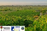 5 Day Alentejo Region Tour from Evora