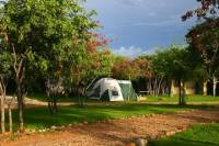 5-Day Etosha National Park on a Budget Tour from Windhoek