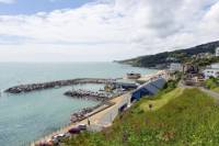 5-Day Isle of Wight and New Forest Tour from London