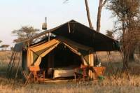 5 Day Private Safari to Tarangire, Serengeti National Park and Ngorongoro Crater from Moshi