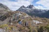 5-Day Tasmania West Coast Camping Tour: Hobart to Launceston