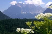 5-Day Tour from Munich to Frankfurt: Rothenburg, Augsburg, Zugspitze