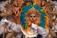 5-Night Rio de Janeiro Carnival Package