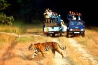 6-Nights Golden Triangle Tour with Ranthambore from Delhi
