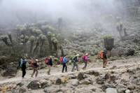 7-Days Mount Kilimanjaro Trekking Via Machame Route From Arusha