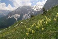 8-Day Albanian Alps Adventure
