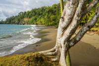 8 Day Costa Rica Natural Wonders Adventure
