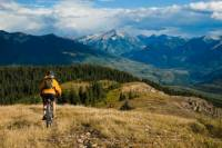 8-Day Private Cycling Tour in Carpathians from Bucharest