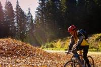 9-Day Private Cycling Tour of the Saxon Villages of Romania from Bucharest