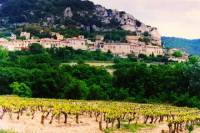 9 Hour Wine tour in Lyon