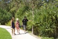 Aboriginal Heritage Walking Tour of Kings Park