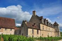 Afternoon tour in the Côte de Nuits vineyards