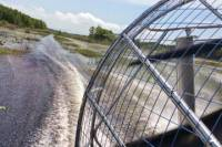 Airboat Adventure from Crystal River
