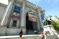 American Museum for Natural History Guided Tour with Japanese Guide