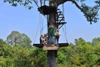 Angkor Canopy Zipline Tour and Ceramics Workshop from Siem Reap
