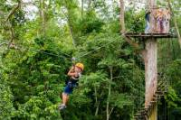 Angkor Park Ziplining and Ta Prohm Tour from Siem Reap