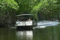 Appleton Rum Tour and Black River Safari Tour from Montego Bay and Grand Palladium