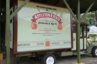 Appleton Rum Tour and Black River Safari Tour from Negril