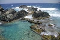 Aruba Shore Excursion: 4x4 Tour and Natural Pool Snorkeling