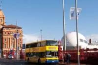 Auckland Shore Excursion: Hop-On Hop-Off Bus Tour