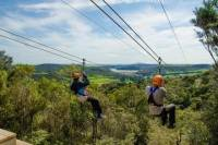 Auckland Shore Excursion: Waiheke Island Tour With Zipline Adventure