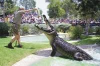 Australian Reptile Park General Entry Ticket