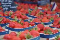 Avignon Food Walking Tour