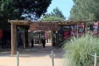 Badoca Safari Park Day Trip from Lisbon