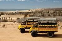 Baja Ranch Tour and Camel Safari from Los Cabos