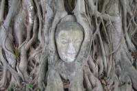 Bang Pa and Ayutthaya Historical Park Tour from Bangkok - Coach and Cruise with Italian Speaking Guide