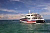 Bangkok to Koh Tao Transfer by Coach and High Speed Catamaran