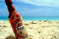 Banks Brewery and Mount Gay Rum Tour in Barbados