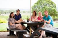Barossa Valley Highlights from Adelaide or Barossa Valley Including Wine and Cheese Tasting