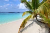 Beach Day Pass at Honeymoon Beach in St John