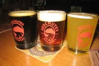 Bend Fermentation Tour with Beer Tastings