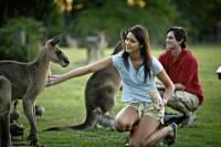 Best of Brisbane Full-Day Sightseeing Tour