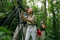 Bird-Watching Tour from Jaco
